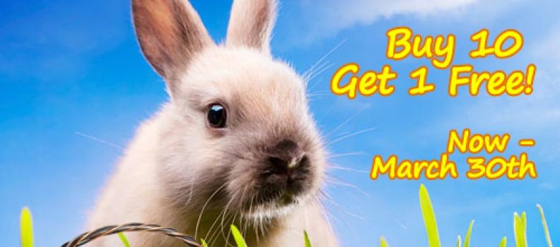 Easter Zirconia Sale!!